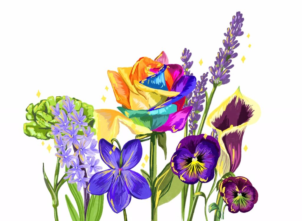 an illustration of the collection of all the flowers together. The hyacinth, the green carnation, the violet, the lilly, the pansy, and the tie-dye rose