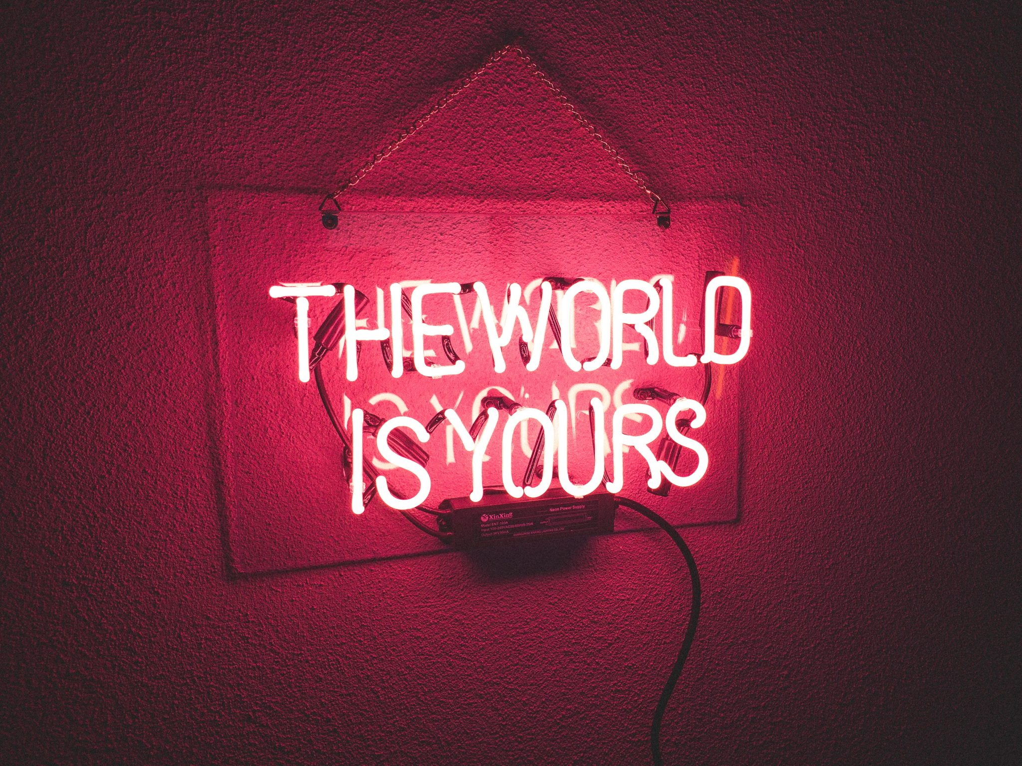 Pink neon is hung up on a wall, it reads THE WORLD IS YOURS